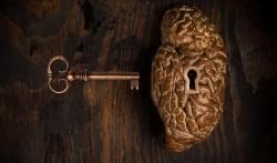 «Правило 40%»: ключ к психологической выносливости